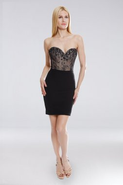 Short Embroidered Lace Bodice Sheath Dress 1822H7810